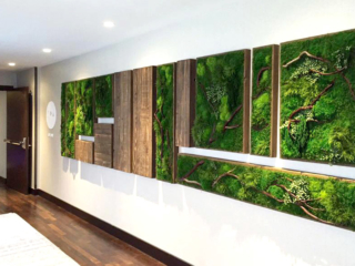 Artisan Moss Houston Mariott Hotel Spa green wall reception interior.