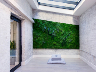 Artisan Moss yoga meditation studio plant wall art in New York.