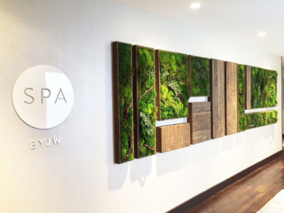 Artisan Moss Mariott Spa reception interior green wall in Houston.