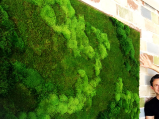 Artisan Moss green wall detail at Liquidology Juice Bar