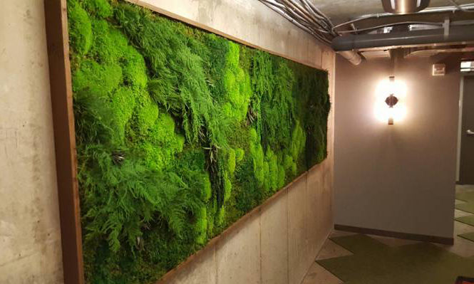 Natural Hand Crafted Botanical Green Wall Art