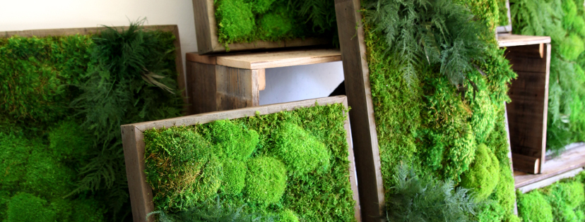 Artisan Moss about our work