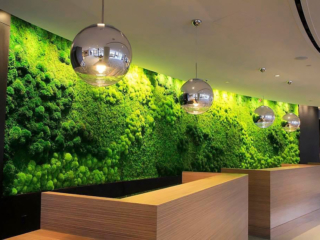 Artisan Moss reception area plant wall art at the Hilton Cleveland Downtown