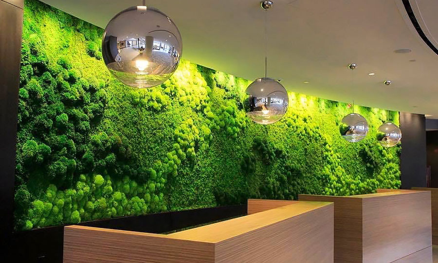 Green Wall Art the perfect green wall art for your home or business - artisan moss