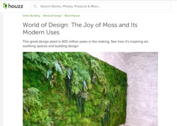 Artisan Moss on houzz.com